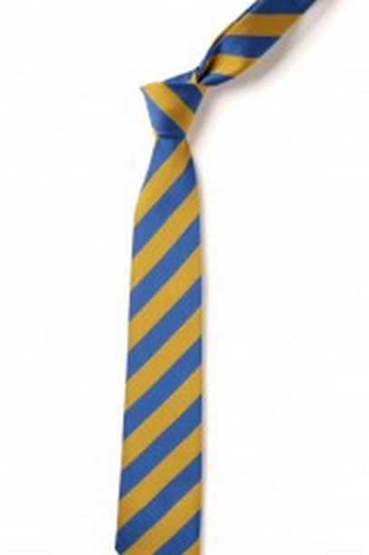 Gold and Royal Striped Tie (No. 6)