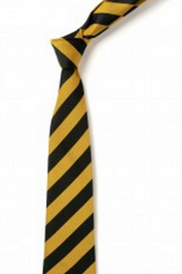Gold and Black Striped Tie (No.16)
