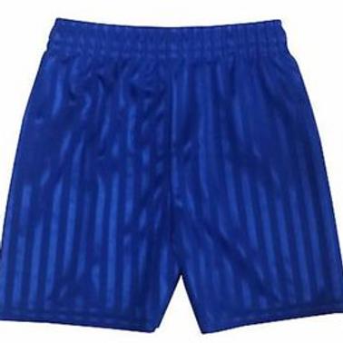 St Saviours PE Shorts