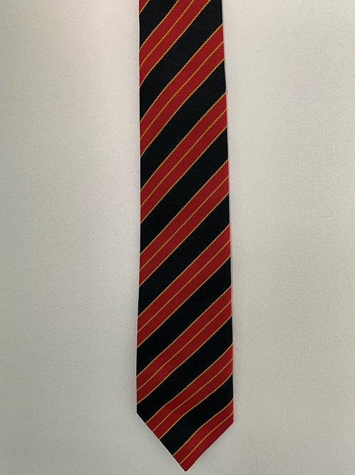 Half Colours Tie