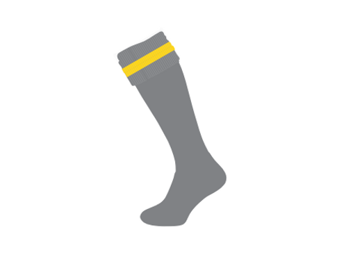 Long Grey Socks with Gold Stripe