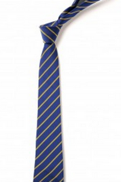 Royal and Gold Thin Striped Tie (No.24)