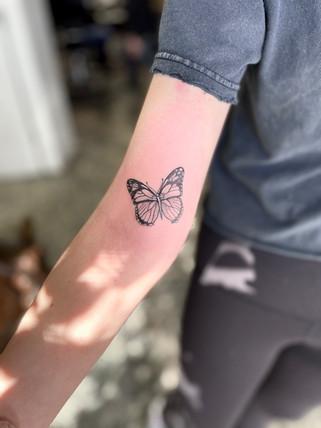 Fine Line Butterfly
