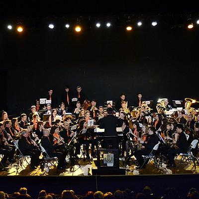 Concierto de Santa Cecilia - XX Aniversario