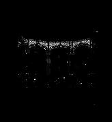 Banda Sinfónica Complutense XX aniversar