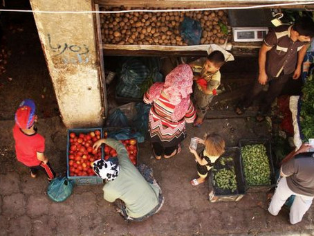 Norte-africanos se preparam para ir ao Iraque