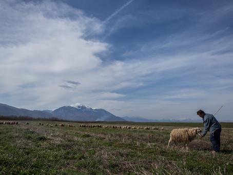 O coração dos pastores pelos Nivkh