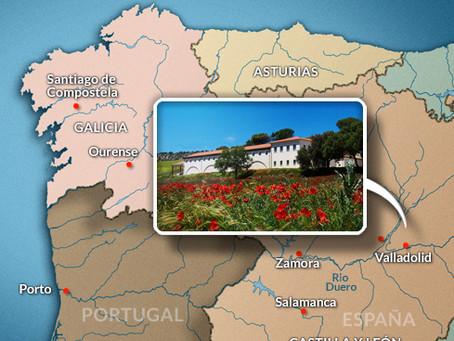 Bodega Quinta Sardonia