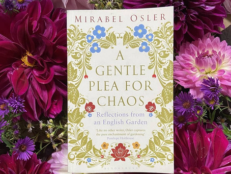 WinH Book Club: A Gentle Plea for Chaos