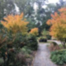 temple ambler winter garden.jpg