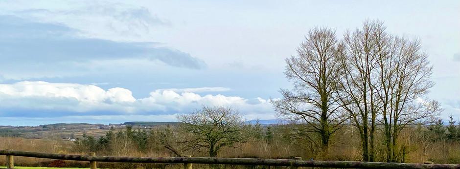 Image 5 - view to Dartmoor.jpg