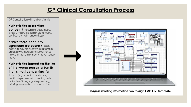 GP clinical consultation process
