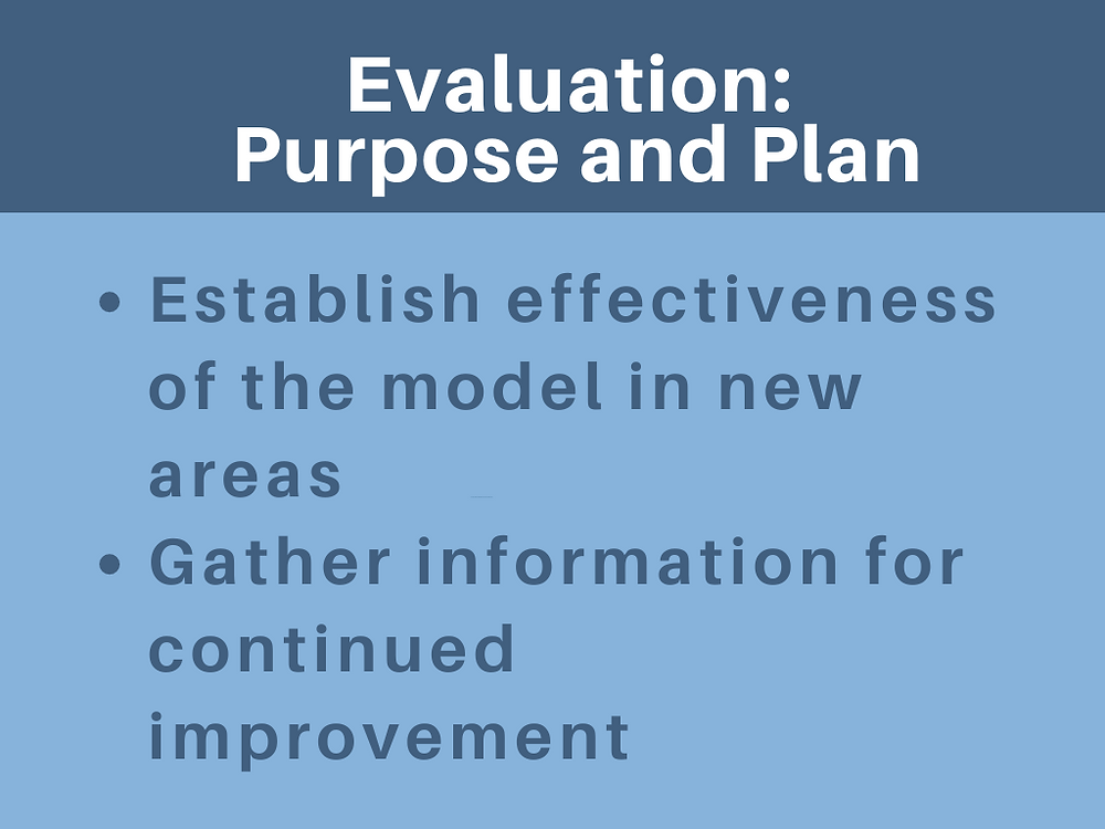 Evaluation purpose and plan