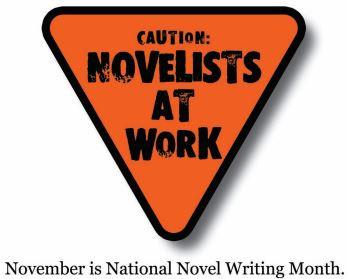 Why everyone should write a novel