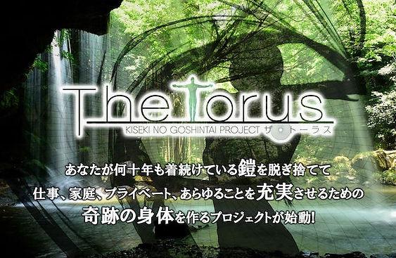 torus.jpg