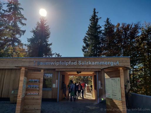 Baumwipfelpfad Salzkammergut .... Grünberg / Gmunden