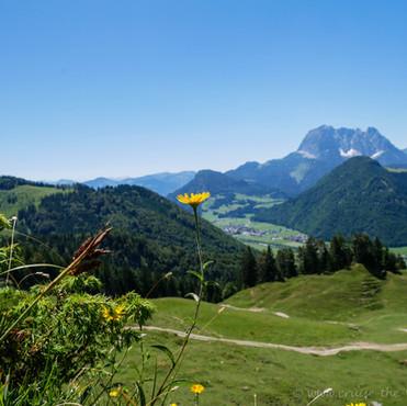 Sommerwochenende in Erpfendorf, Kitzbühel