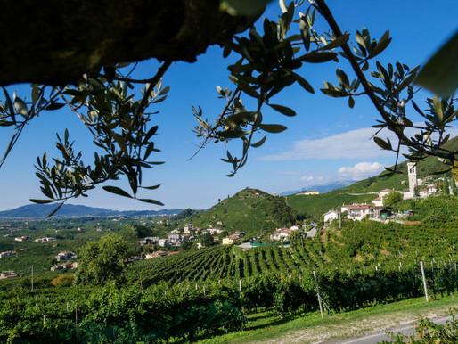 Bella Italia | Valdobbiadene | Prosecco Street