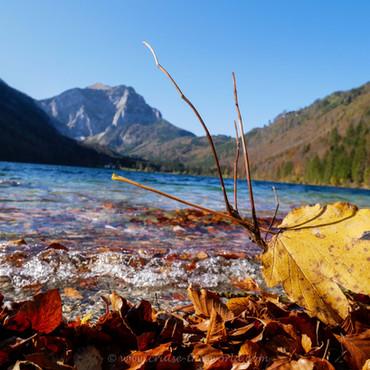 Der letzte Herbst-Sonnentag bei den Langbathseen.