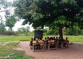 Children study under trees at Baayiri in the Upper West Region