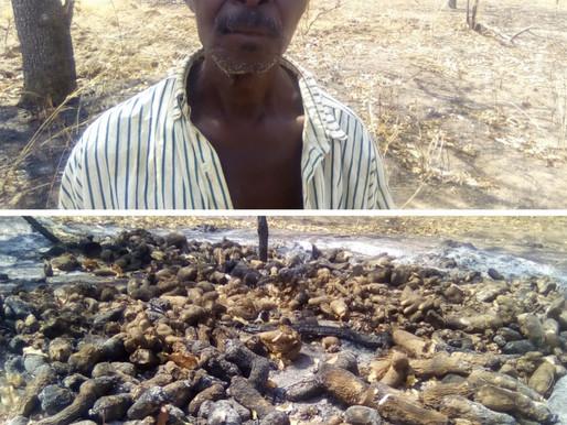 Farm of a sixty-seven-year-old farmer in Piree in the Nadowli-Kaleo District razed by fire
