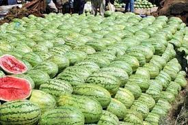 Watermelon farmers in Upper West cry over lack of ready market
