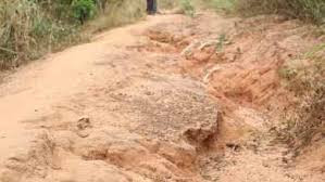Deplorable state of Dorimon-Dabo road posing health risk to people - Assembly Member