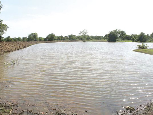 90 % of One Village One Dam Projects not Viable for Irrigation Farming in Ghana