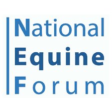 EMILE INVITED TO SIT ON THE PANEL FOR CHARITIES DISCUSSION AT 2019 NATIONAL EQUINE FORUM IN LONDON