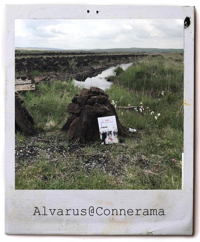 Alavarus_Connerama
