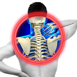 Neck Pain Cervical Spine isolated on whi
