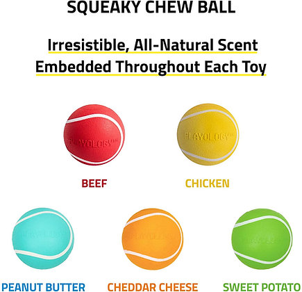 Squeaky Chew Ball for Dogs