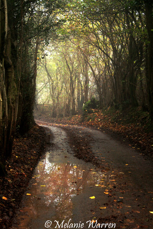 Walk to Chapel Winter 3