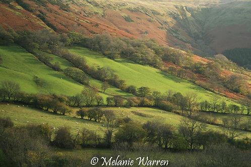 Views from Castle Farm