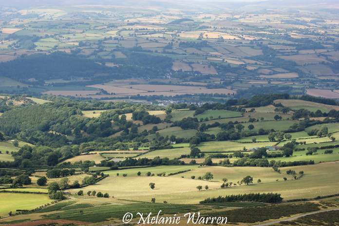View from Offa's Dyke 6