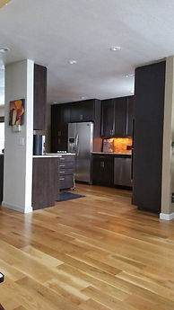 general contractor, remodeling company, remodeling companies, kitchen remodeling company, kitchen remodeling, lone tree, littleton