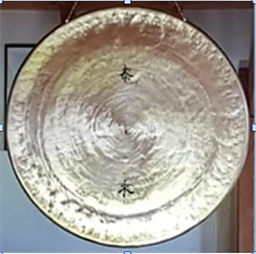 DQOSM 2020 DRaille Gong photo.tiff