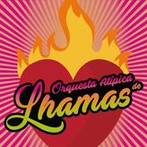 LogoLhama.png