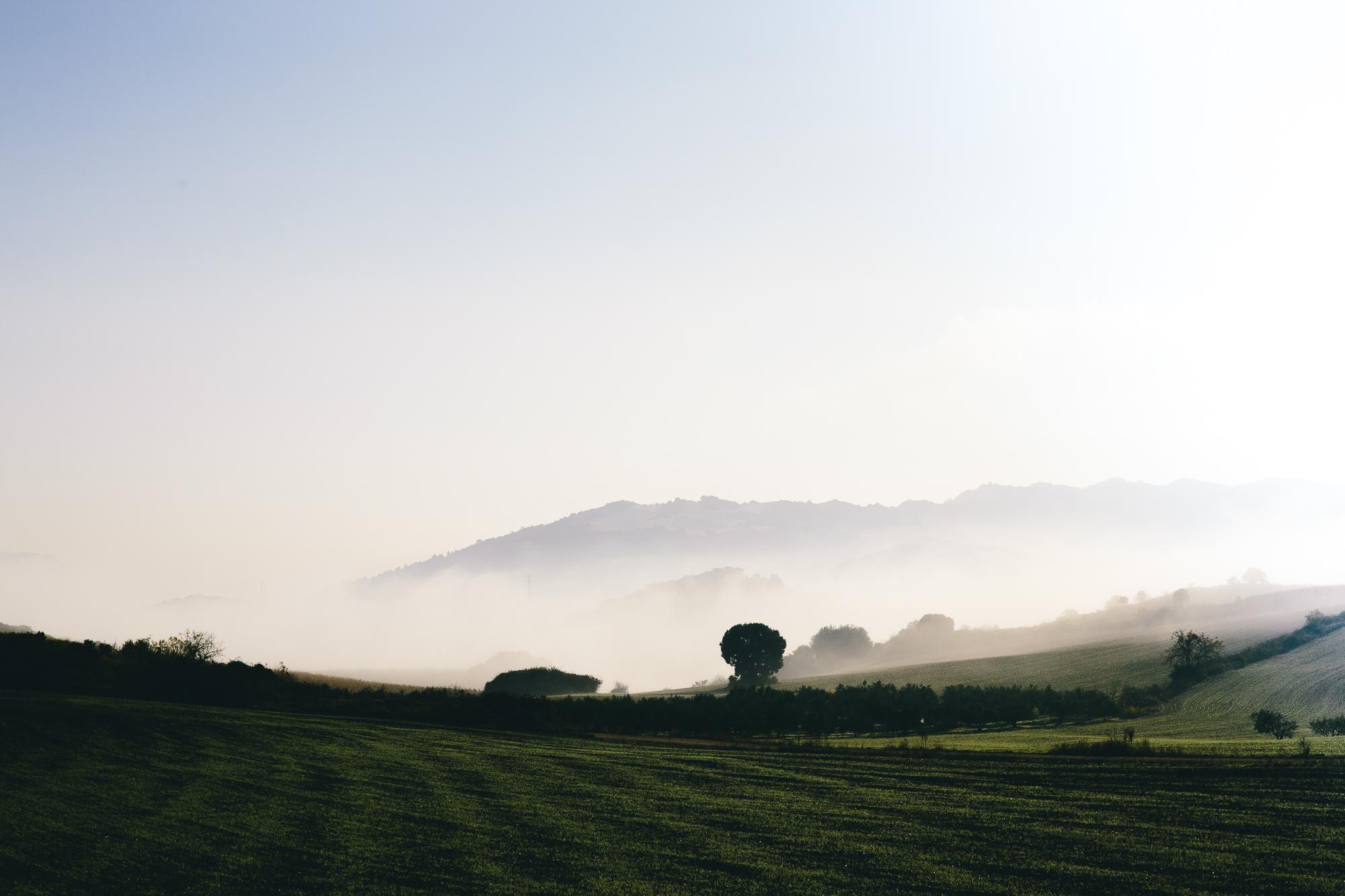 Nature brume Espagne