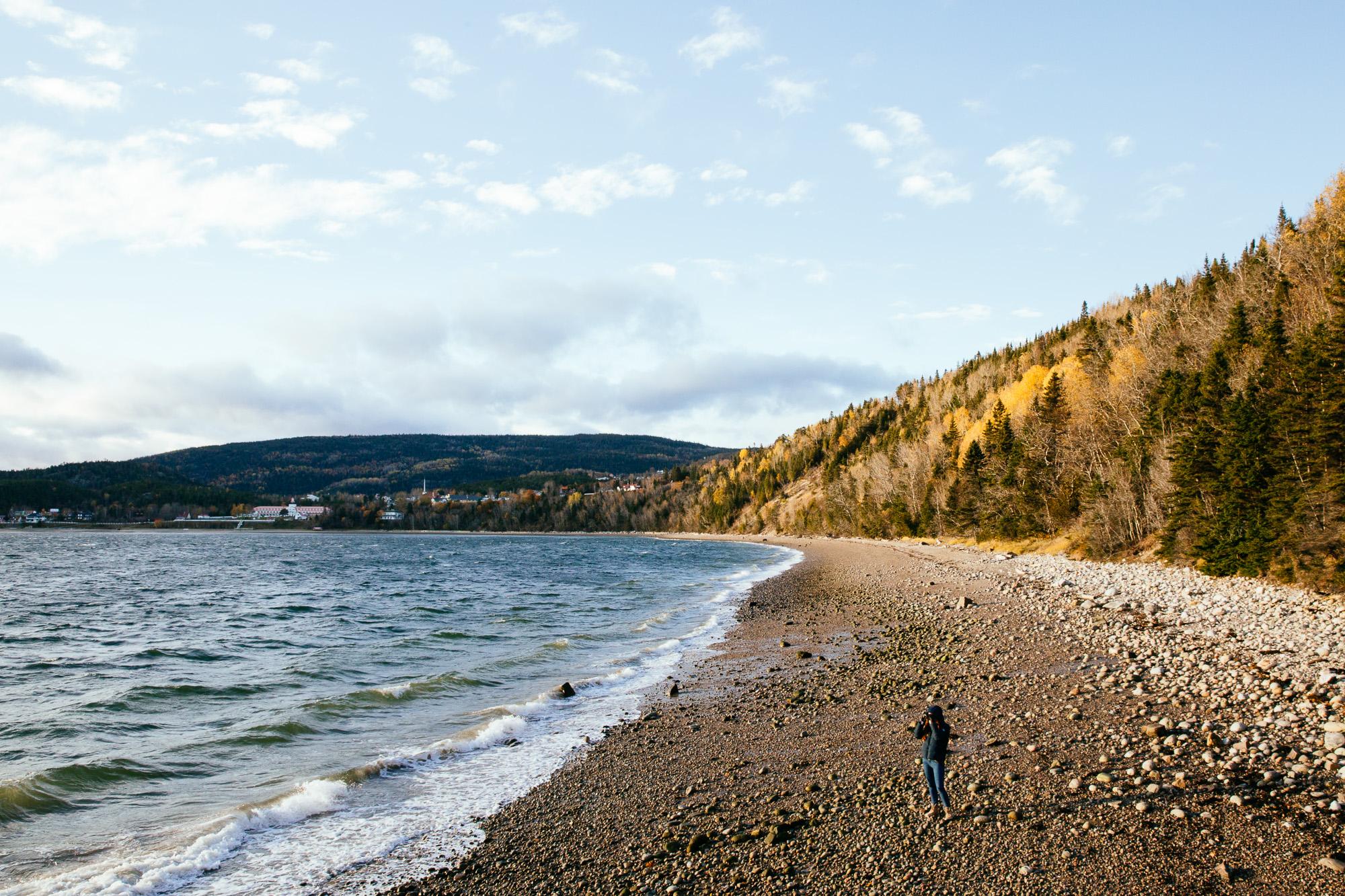 Nature forêt mer Canada