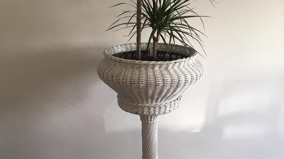 Fabulous wicker planter