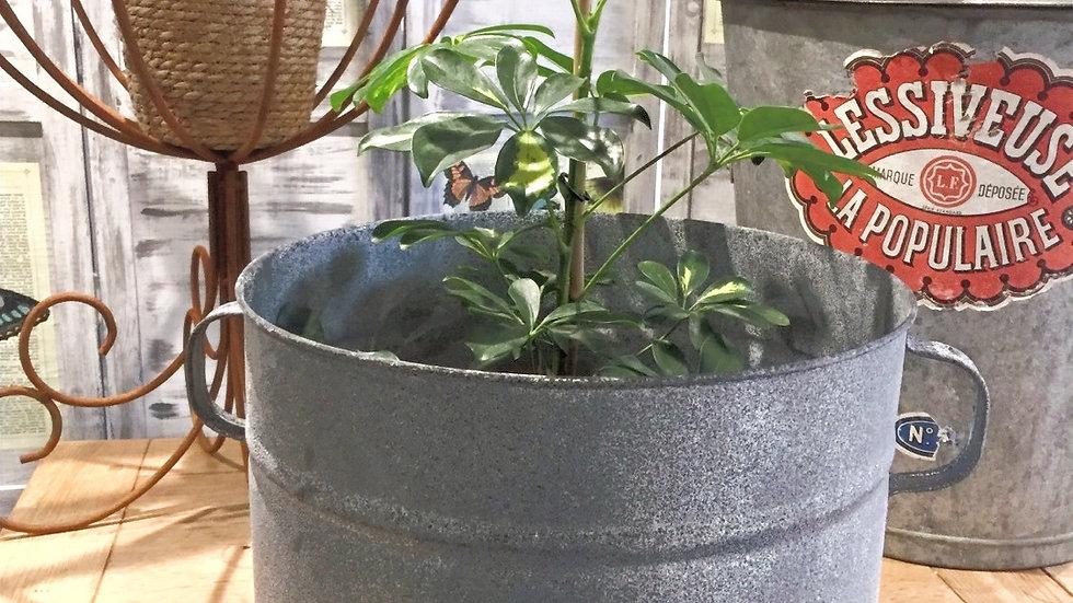Zinc Planter 40 L