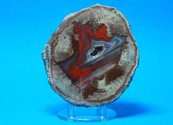 Lithophyse, agate de l'Esterel