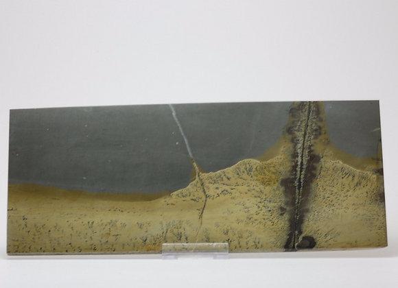 Plaque marbre paysagé 02