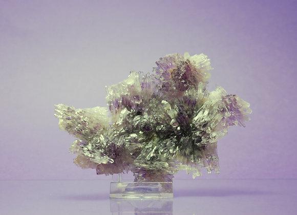Fleur d'améthyste 09