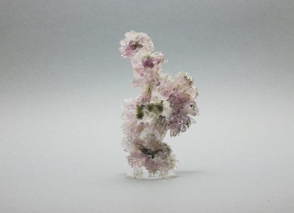 Fleur d'améthyste 06