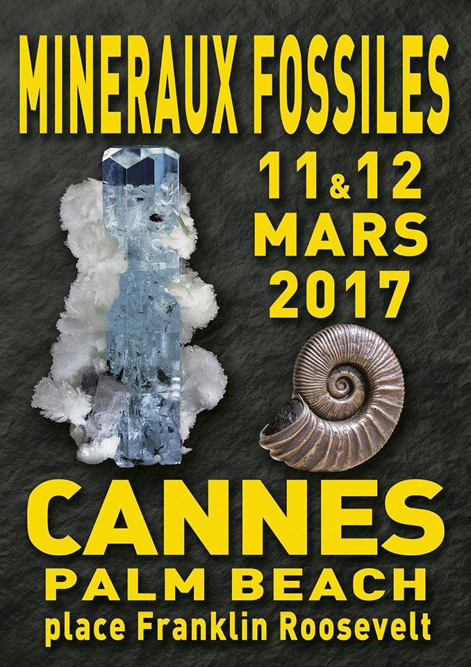affiche bourse cannes2017