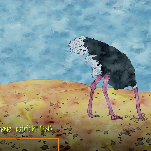 Ostrich DNA