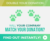 paws-will-your-company-match.png