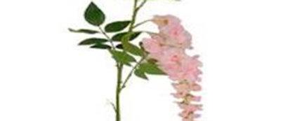 WISTERIA ROSA CON  2 FLORES 80 CM